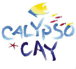Calypso Cay Terms & Conditions Form